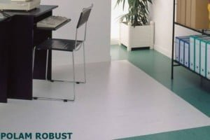 gerflor mipolam robust